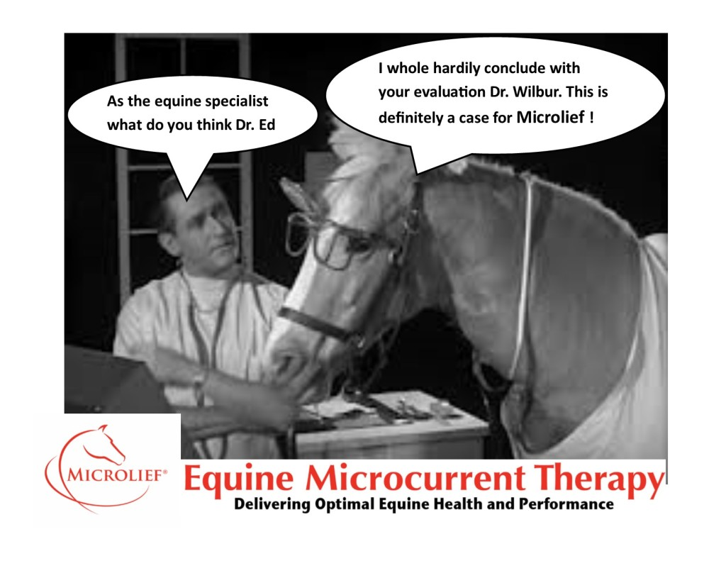 Mr Ed 2 Microlief